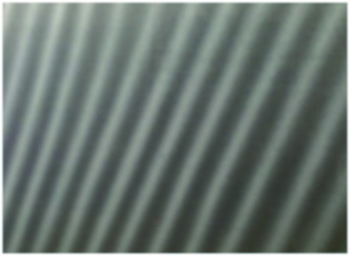 Nucleus,  1981년, 116×91㎝, Oil on canvas