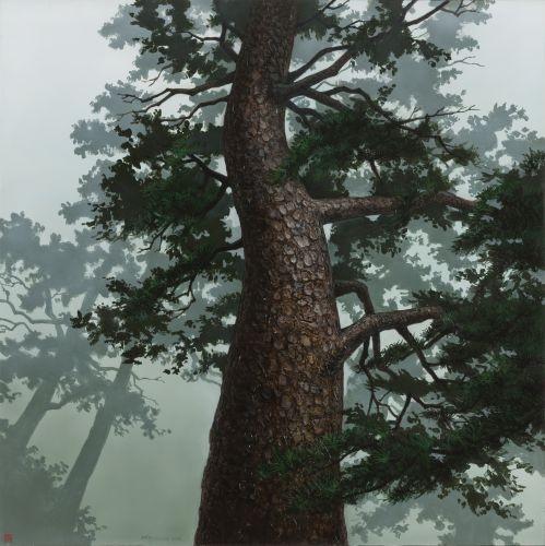 어느 이방인의 노래중에서 숲을 지키는 나무 A, 2015, Acrylic on canvas, 121.92×121.92 cm