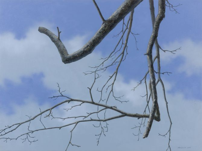 어느 이방인의 노래중에서 겨울나무 B,  2012,  Acrylic on canvas,  91.44×121.92 cm